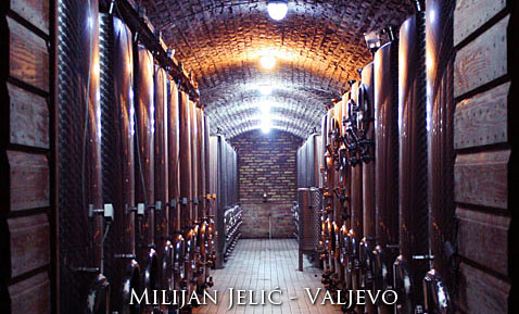 Milijan Jelić Winery